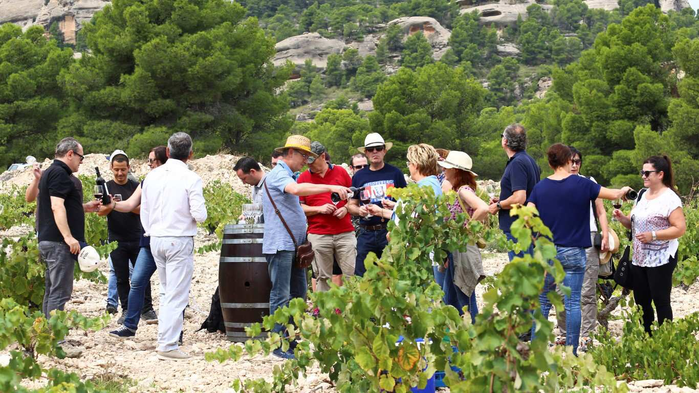 Wine tourism in Yecla, Murcia