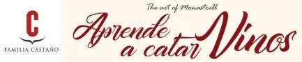 Aprende a catar vinos en Bodegas Castaño